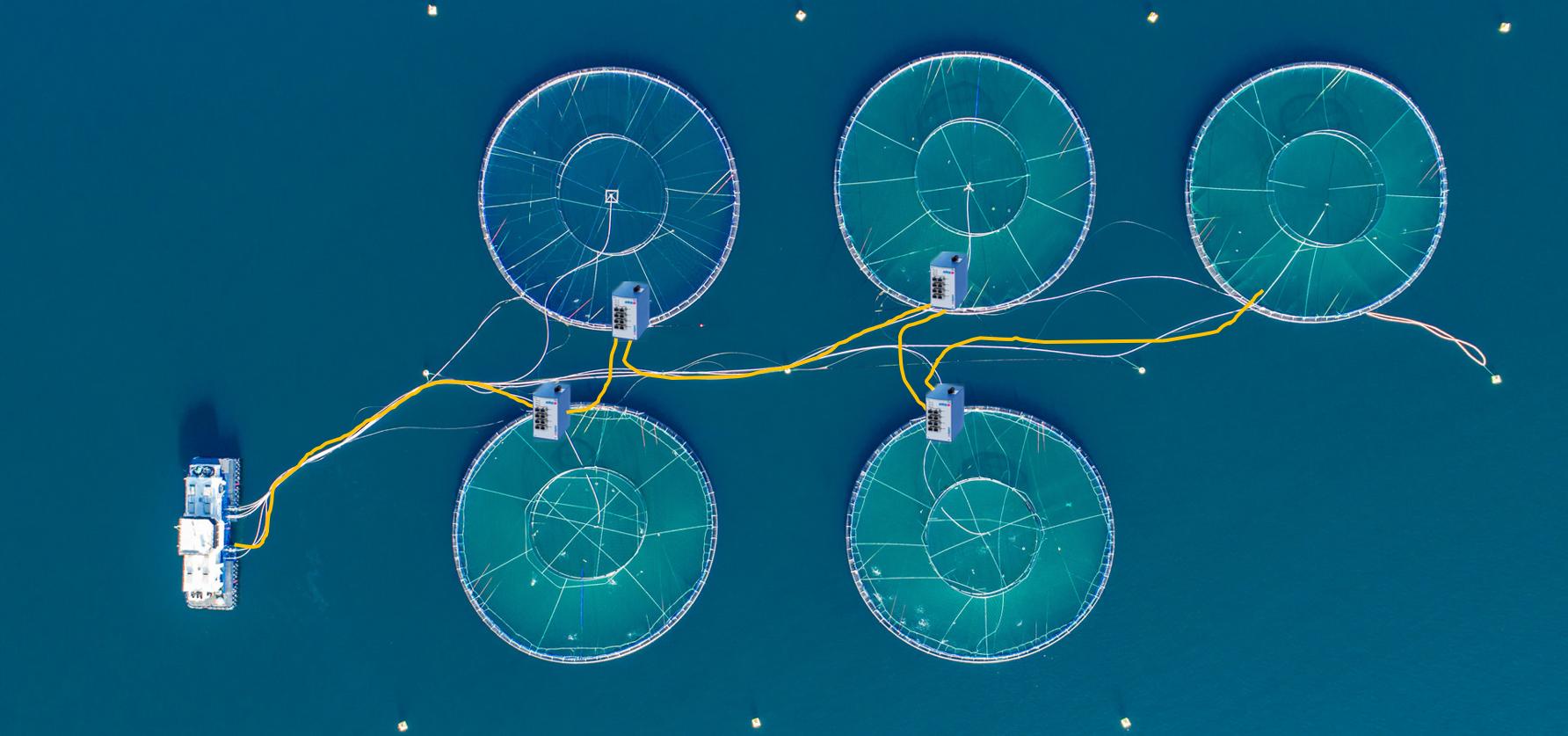 Linear-fiber-bypass
