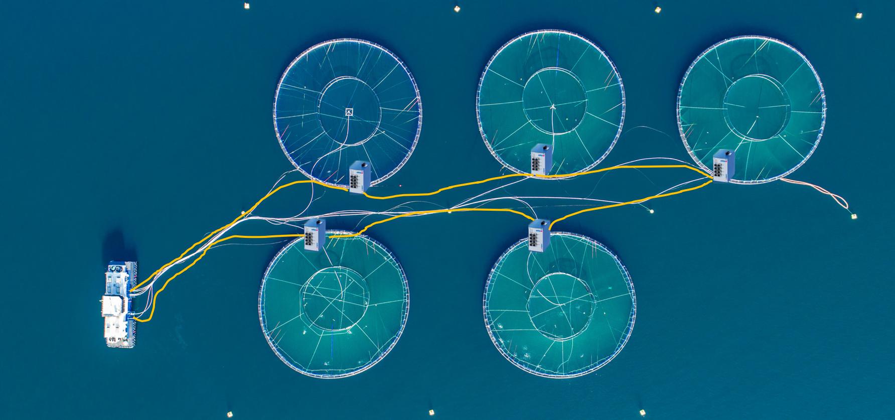 Ring-fiber-bypass
