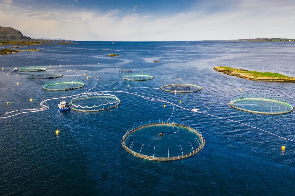 Fiskeoppdrett i Norge